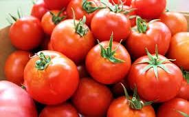Fuerte aumento del precio del tomate.