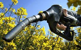 Fuente biodiesel.com.ar