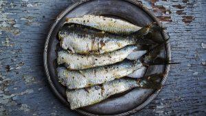 sardines-1489630