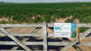 Adhesión BPA en Córdoba