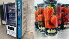 España: Packaging innovador para conservar frutas y verdutas